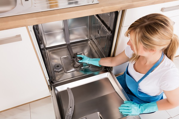 how to clean a dishwasher filter